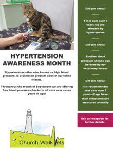 Hypertension Awareness Month